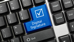 Electronic Signatures, Submissions, and Bids for Local Governments