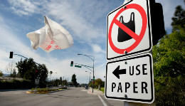 Paper or Plastic? An Overview of Plastic Bag Bans in Washington State