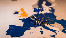 EU's General Data Protection Regulation: Does It Apply to Your Agency?