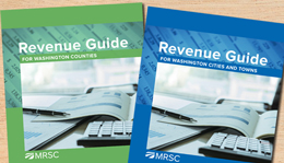 New City and County Revenue Guides Published!